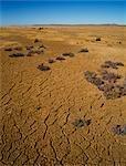 Cracked Earth, Dry Lake Bed, Australia