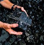 Man Holding Black Coal, Australia
