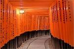 Portes Torii, Fushimi Inari Taisha, Fushimi, Kyoto, préfecture de Kyōto, Kansai, Honshu, Japon