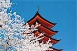Jinga sanctuaire d'Itsukushima, Miyajima, Hatsukaichi, préfecture de Hiroshima, Honshu, Japon
