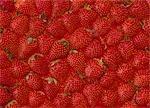 Erdbeeren / full Frame