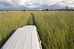 La vue sur le toit un véhicule, lac Chivero, Mashonaland, Zimbabwe