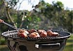 Huhn auf den Braai, Kloof, Provinz KwaZulu-Natal, Südafrika