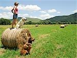 Femme sur un sud-africain ferme debout sur un balles rondes de paille avec chiens à côté de sa