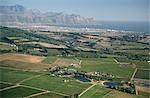 Vue aérienne du vignoble côtes