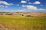 Vue de paysage des terres agricoles avec les montagnes en arrière-plan