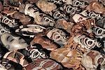 Variety of Carved;Wooden African Masks - Full Frame