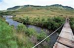 Femme debout sur un pont suspendu en bois