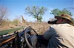 Man Photographing Giraffe (Giraffa camelopardalis) From 4X4