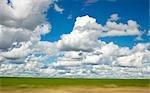 Vue de Cumulus répartis dans des champs verts