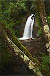 WaterMaria Shires Falls Between Sabi and Grasskop