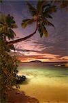 Palm Beach Scenic