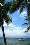 Yacht amarré sur une plage de l'île