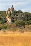 Kopjes château de granit qui dominent le paysage du Parc National du Zimbabwe Rhodes Matopos sont formées par l'érosion des blocs, près de Bulawayo, Matabeleland Sud, Zimbabwe