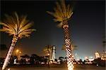 Palmiers dans Zabeel park avec de Dubaï à l'arrière-plan, a photographié pendant la nuit. Zabeel Park, Dubai, Émirats Arabes Unis