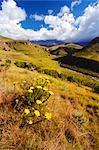 Vue panoramique sur la vallée de la rivière Bushmans