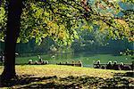 St. James Park, London, England, Vereinigtes Königreich, Europa
