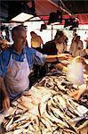 Fish market, Venice, Veneto, Italy, Europe