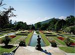 Gardens of the Villa Taranto, Lake Maggiore, Piemonte, Italy, Europe