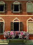 Gros plan des pétunias sur un balcon d'une maison à Morcote, sur le lac de Lugano, Tessin, Suisse, Europe