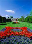 Rote Tulpen und der Orangerie, Kensington Gardens, London, England, UK