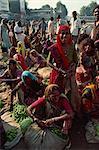État d'Ahmedabad, Gujarat, Inde, Asie
