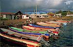 Thunfisch Fischerboote, Hanga Roa, Osterinsel, Chile, Südamerika