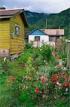 Puyuhuapi village, Chilean Fjords, Chile, South America