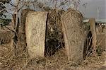 Shifta Tomb, Sidamo, Ethiopia, Africa