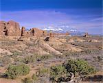 La section Windows, Parc National des Arches et des montagnes de La Sal, Utah, États-Unis d'Amérique, Amérique du Nord