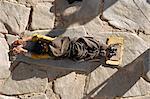 Pèlerin se prosterner, le Temple de Jokhang, Barkhor, Lhassa, Tibet, Chine, Asie