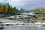 Trappstegforsarna Waterfalls, Fatmomakke region, Lappland, Sweden, Scandinavia, Europe