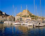 Bonifacio harbour, Corsica, France