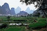 Farmland on edge of town, among the limestone towers, Yangshuo, Guangxi, China, Asia