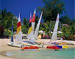 Grand Baie, Mauritius, Indian Ocean, Africa