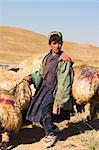 Shepherd boy tending his flock, between Chakhcharan and Jam, Afghanistan, Asia