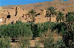 Ruined kasbah, Tinerhir, Morocco, North Africa, Africa