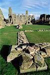 Easby Abbey, near Richmond, Yorkshire, England, United Kingdom, Euorpe