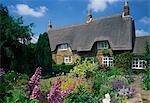 Chaumières avec jardins pleins de fleurs d'été dans le Hampshire, Angleterre, Royaume-Uni, Europe