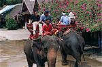 Touristes monter sur les éléphants dans le Rose Garden à Nakhon Pratom en Thaïlande, Asie du sud-est, Asie