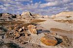 Blue Mesa, Petrified Forest National Park, Arizona, États-Unis d'Amérique, l'Amérique du Nord