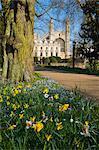 Kings College Chapel, Cambridge, Cambridgeshire, Angleterre, Royaume-Uni, Europe