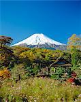 Mt. Fuji, Japon