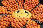 Affichent les fruits dans les jardins de Bioves, Festival de citron, Menton, Alpes Maritimes, Provence, Côte d'Azur, France, Europe