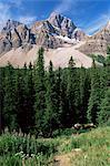 Sommet Bow, Parc National Banff, UNESCO World Heritage Site, Alberta, Canada, en Amérique du Nord