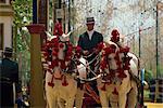 Calèche, Feria del Caballo (Foire du cheval), Jerez de la Frontera, région de Cadix, Andalousie (Andalousie), Espagne, Europe