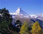 Le Matterhorn montagne 4478m), Valais (Wallis), Alpes suisses, Suisse, Europe