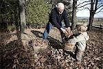 Enkel helfende Großvater Rake Blätter