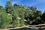 Sierra de Cazorla, 2000m, Parc National de Cazorla, Province de Jaén, Andalousie, Espagne, Europe