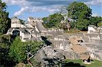 L'Amérique du Nord Acropole, Tikal, Guatemala, UNESCO World Heritage Site, centrale